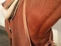 5-neckring