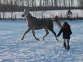 winteroldenrode-05