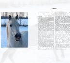 Buch3-Einleitung-1Seite-V5-Seite001