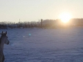 winteroldenrode-10